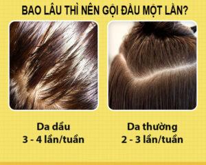 Đối với da đầu thường và dâu đầu dầu thì bao lâu thi nên gội đầu là tốt nhất?